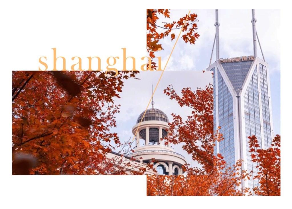 初秋城市纪 | 漫游于最美的季节,任由时光流转